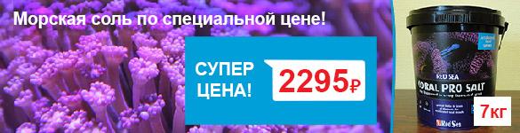Соль для морских аквариумов по суперценам в супермаркетах Аква Лого!