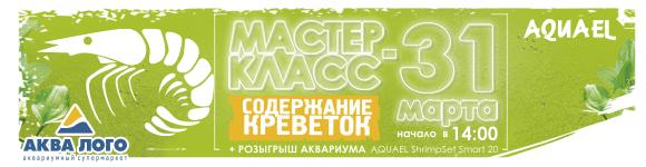 25 марта приглашаем на праздник <<H2O: неОбычные открытия>> в Биологический музей им. К.А. Тимирязева