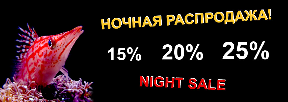 Aqualogo_night_sale1.jpg
