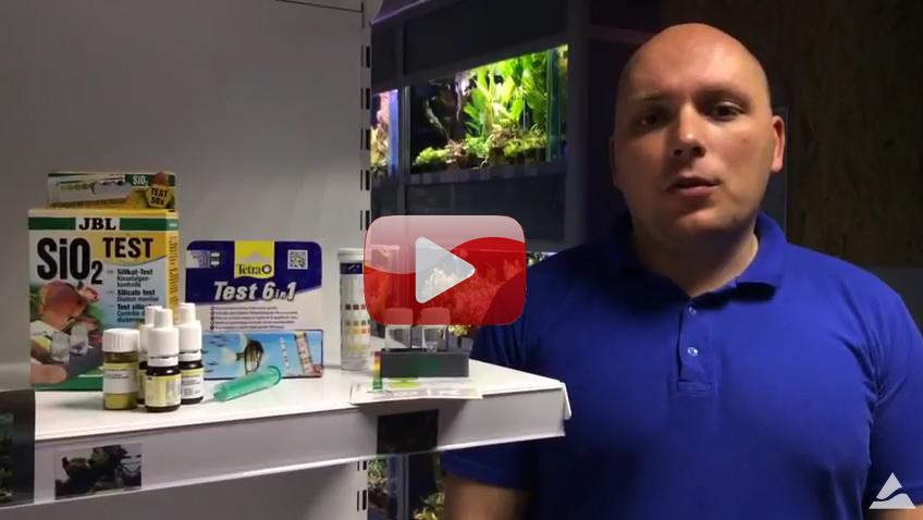 Экспресс-тестирование аквариумной водыв Аква Лого на ВДНХ. Всего за 50 рублей!