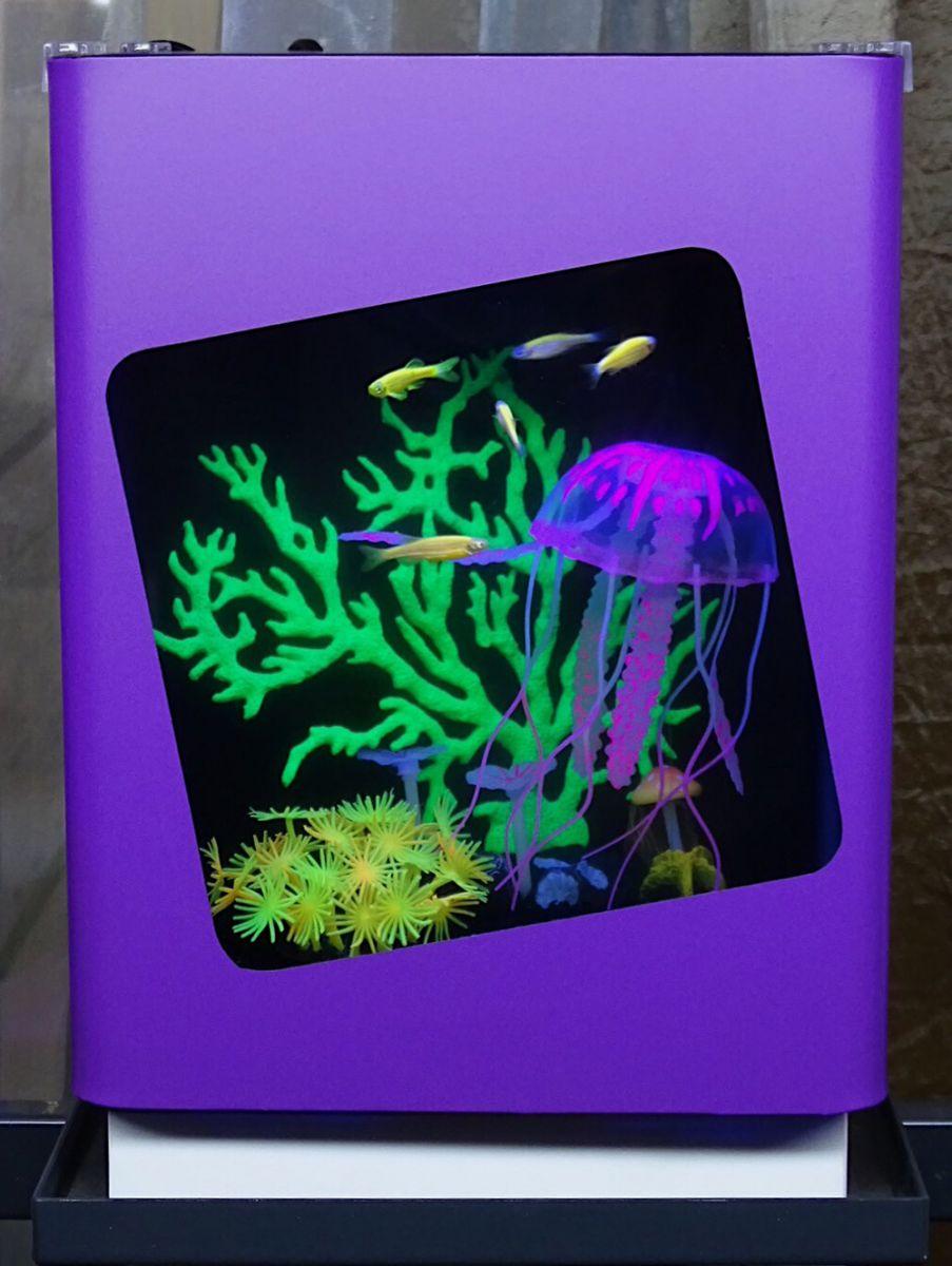 Пресноводный аквариум - готовое решение Фантазия в Аква Лого на Соколе