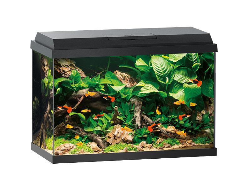 В супермаркетах Аква Лого низкие цены на аквариумы Juwel!