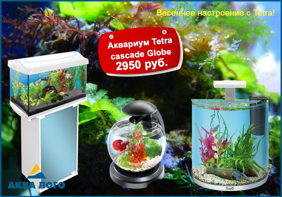 В супермаркетах Аква Лого низкие цены на аквариумы Tetra!