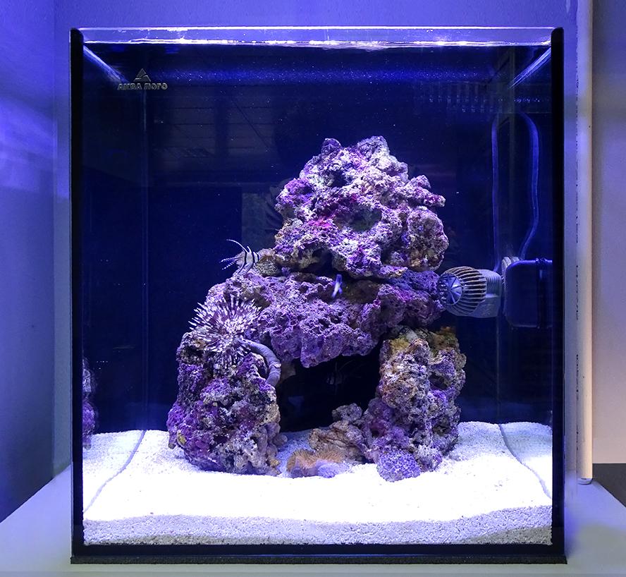 Морской аквариум - готовое решение Морская сказка - объем - 60 литров