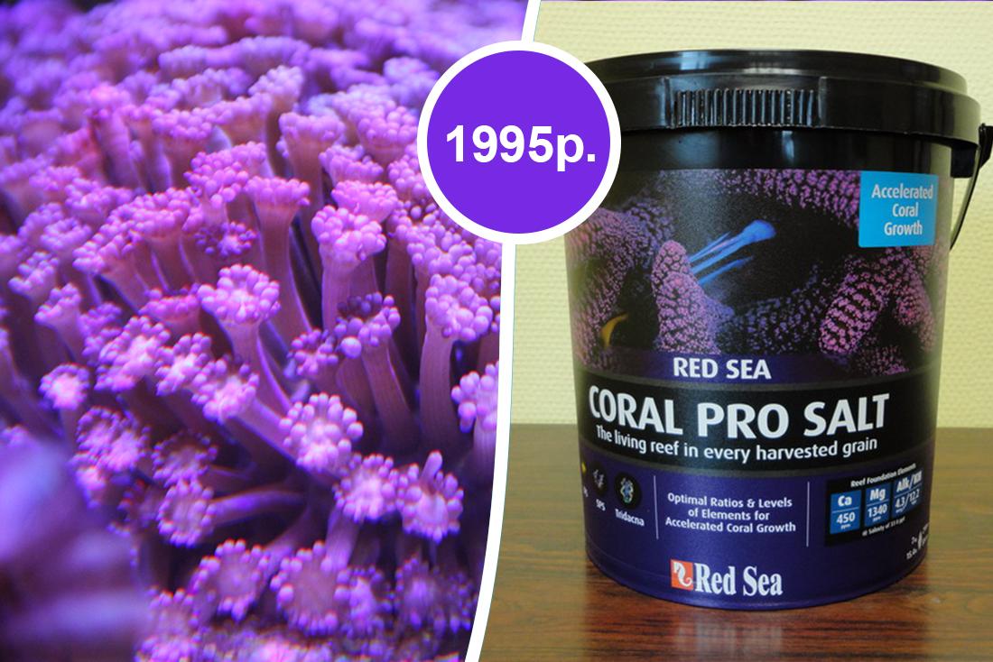 Скидка 20% на соль для морских аквариумов в супермаркетах Аква Лого!