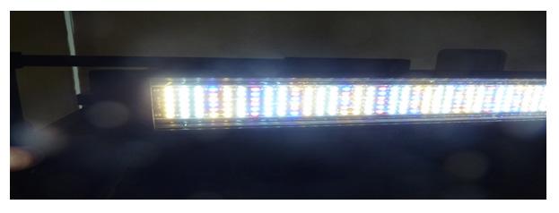 Светодиодные светильники Hagen в супермаркете Аква Лого на ВДНХ!