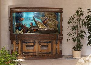 Аквариумистика 25 лет назад и сейчас. Размер аквариума и нормы посадки рыб.