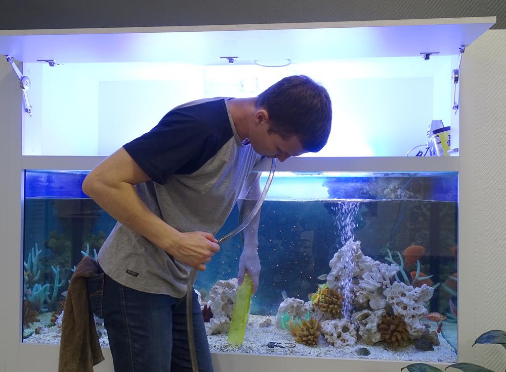 Статья - как и зачем чистить домашний аквариум
