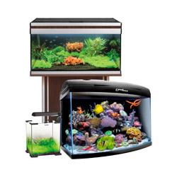 Как купить аквариум недорого?