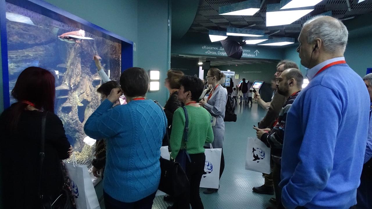 На экскурсии по океанариуму
