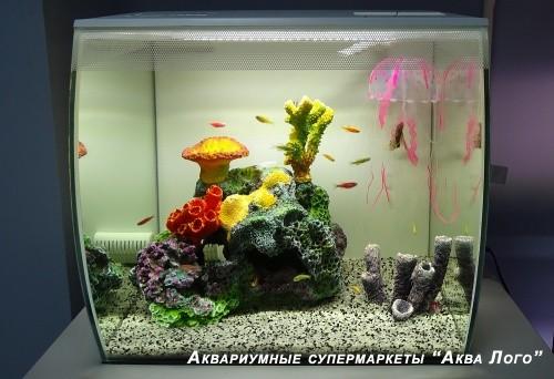 Аквариум готовое решение - Игра цвета - в супермаркете Аква Лого на Тропарево